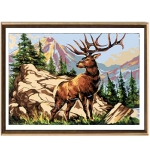 Canvas 45x60 Animals Color 14.798